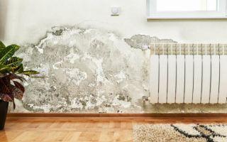 Как избавиться от сырости в доме: народные и профессиональные способы