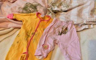 Как отстирать плесень с одежды?